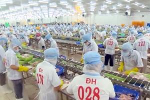 TP. Bến Tre trên 4,5 tỷ đồng hỗ trợ công tác khuyến công