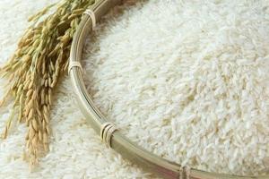 Kiểm tra việc mua gạo dự trữ quốc gia: Phát hiện nhiều sai phạm