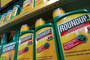 Chỉ sử dụng thuốc bảo vệ thực vật chứa hoạt chất glyphosate đến ngày 30/6/2021