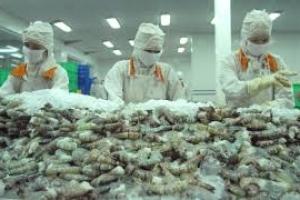 Xuất khẩu tôm duy trì đà tăng trưởng