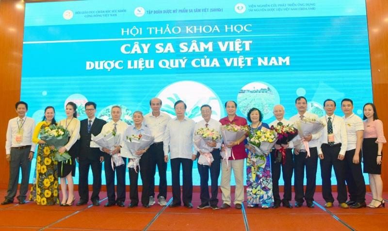 Cây sa sâm Việt - Dược liệu quý Việt Nam