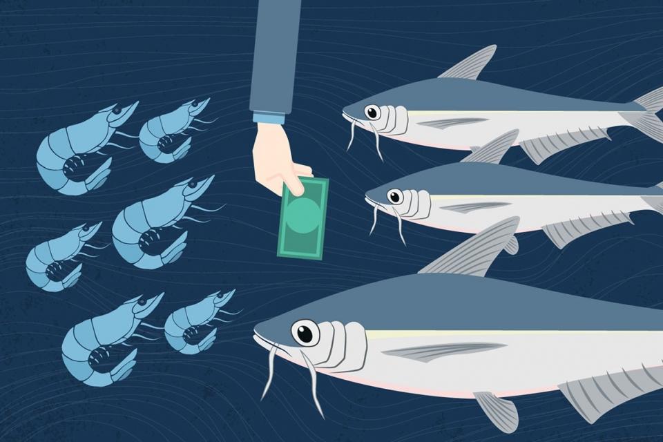 Tổng quan về thị trường thủy sản Việt Nam trong tháng 5/2020