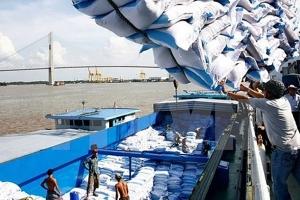 Việt Nam vượt qua Thái Lan là nhà cung ứng gạo lớn nhất cho Malaysia