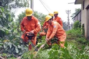 Bộ Công Thương: Thực hiện nhiều giải pháp, đảm bảo cấp điện an toàn trong mùa mưa bão