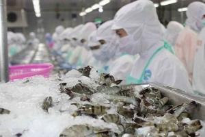 Xuất khẩu tôm sang Mỹ trong năm 2020 dự kiến tăng khoảng 20%