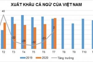 Tháng 7, xuất khẩu cá ngừ Việt Nam đã nhìn thấy tín hiệu tốt hơn