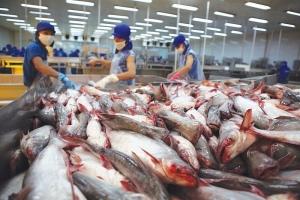 Xuất khẩu thủy sản vào EU tăng nhờ cú huých EVFTA