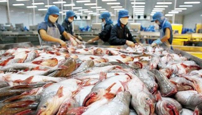 Tháng 7, xuất khẩu cá tra sang Mỹ tăng nhẹ
