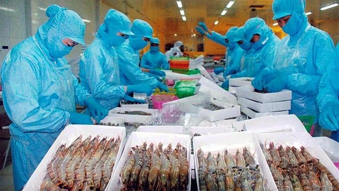 Số lô hàng thủy sản bị cảnh báo vi phạm 4 tháng năm 2020 giảm nhưng vẫn ở mức cao