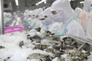 Phòng vệ thương mại: Chủ động ứng phó, bảo vệ hàng hóa xuất khẩu của Việt Nam
