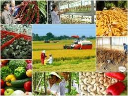 Chính sách khuyến công góp phần nâng cao năng lực cạnh tranh của các doanh nghiệp công nghiệp nông thôn trong bối cảnh hội nhập kinh tế quốc tế sâu rộng