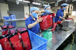 Xuất khẩu của Việt Nam sang Israel tiếp tục hồi phục trong năm 2020