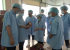 Bộ Công Thương: Quyết liệt, đồng bộ các giải pháp bảo đảm an toàn thực phẩm