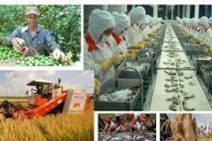 Danh sách 330 đầu mối cung cấp nông sản phía Nam
