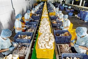 Hoạt động sản xuất tại khu công nghiệp ổn định