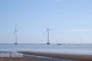 Giao 2 khu vực biển trên 220 ha để khai thác năng lượng gió
