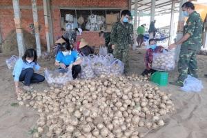 Hội Liên hiệp Phụ nữ tỉnh Bến Tre hỗ trợ nông dân Thạnh Phú tiêu thụ sắn