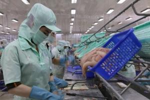 Khôi phục các thị trường xuất khẩu cá tra tiềm năng sau dịch Covid-19