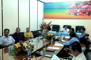 Bắc Giang tổ chức Hội nghị trực tuyến  xúc tiến tiêu thụ vải thiều năm 2020